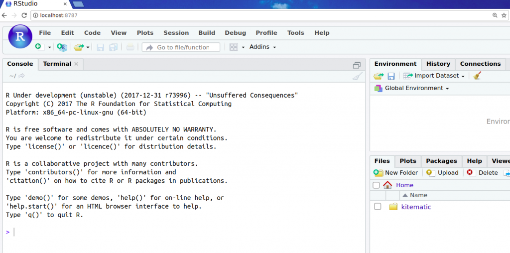 Screenshot of RStudio in the browser